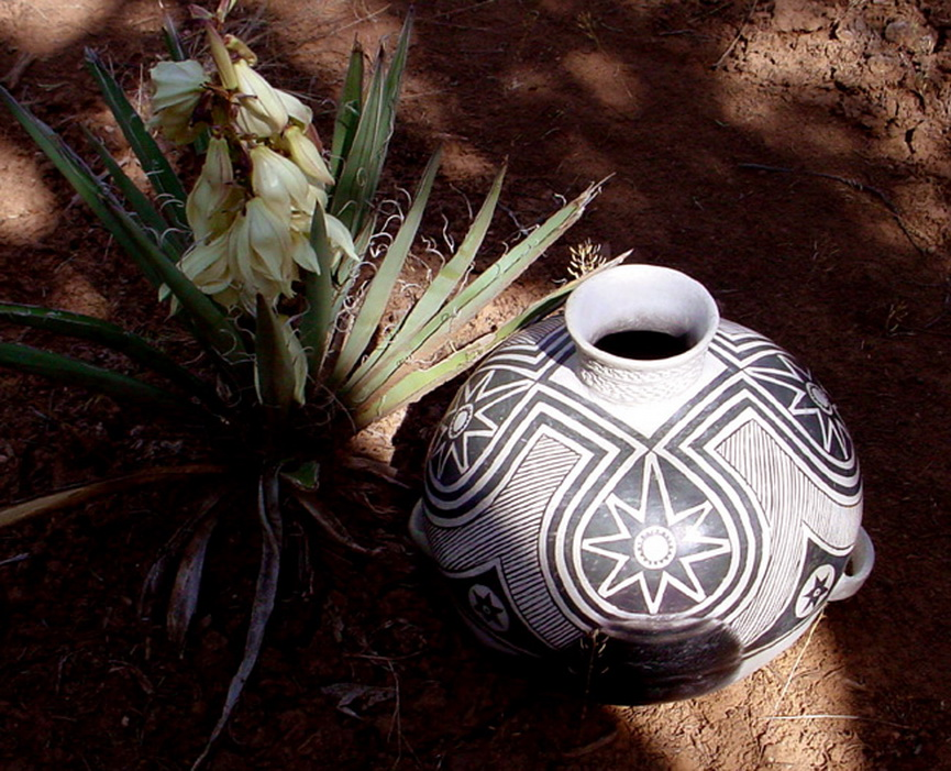 #1100 Mesa Verde B/w Olla